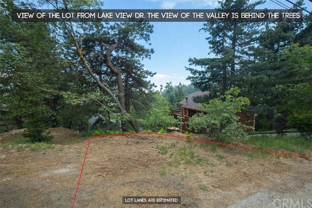 26555 Lakeview Drive, Rimforest, CA 92378 (#EV20102147) :: The Costantino Group | Cal American Homes and Realty