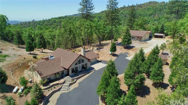 53252 Timberview Rd., North Fork, CA 93643 (#FR20092261) :: Anderson Real Estate Group