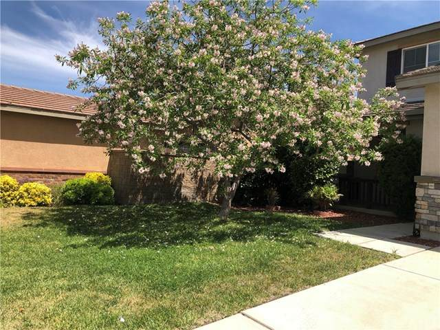 53011 Belle Isis Court, Lake Elsinore, CA 92532 (#WS20104543) :: Compass