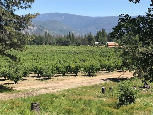 North Fork, CA 93643 :: Team Forss Realty Group