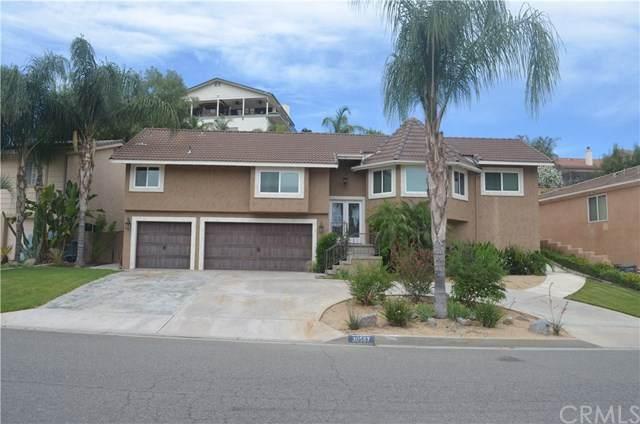30567 Cinnamon Teal Drive, Canyon Lake, CA 92587 (#SW20104889) :: RE/MAX Empire Properties