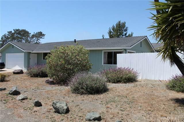 1136 Ramona Avenue, Los Osos, CA 93402 (#SC20104008) :: Wendy Rich-Soto and Associates