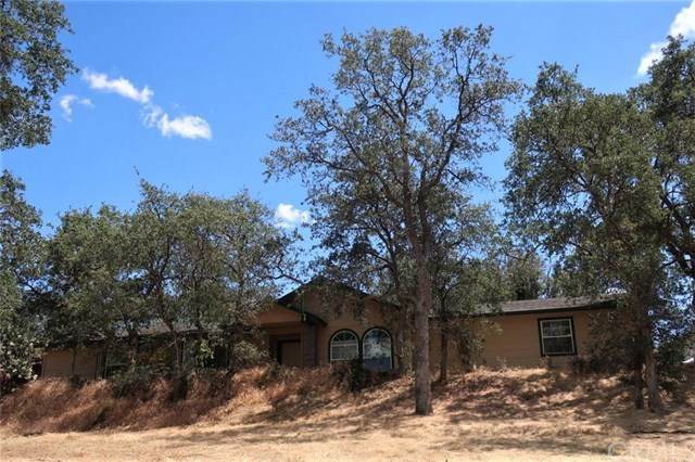 29771 N Lilley Way, Coarsegold, CA 93614 (#FR20104959) :: Anderson Real Estate Group