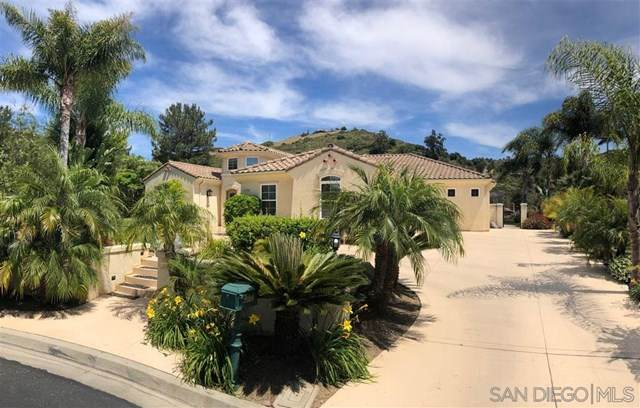 3388 Devon Ct, Jamul, CA 91935 (#200024748) :: Sperry Residential Group