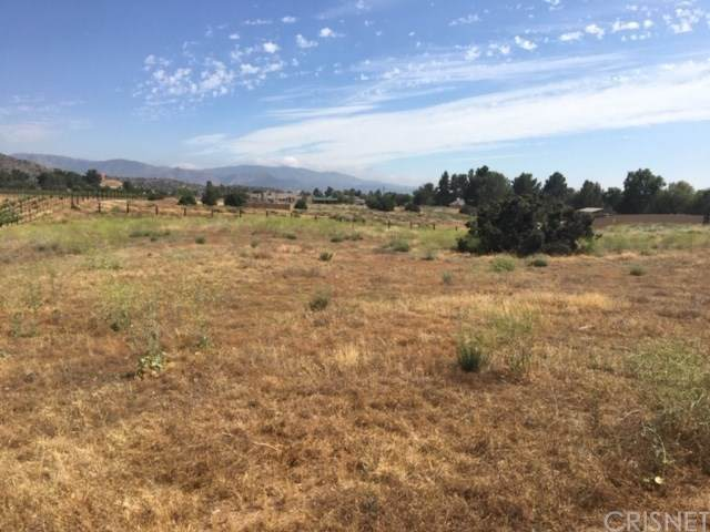 0 Vac/Sierra Hwy/Vic Johnson Road, Agua Dulce, CA 91350 (#SR20104740) :: RE/MAX Empire Properties