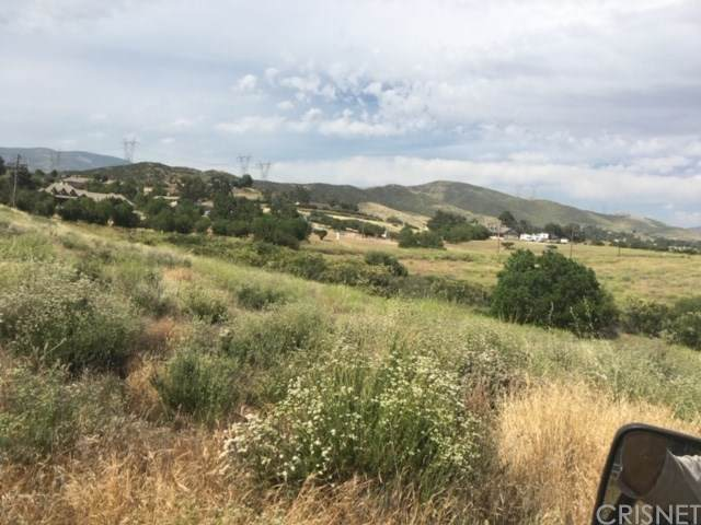 0 Vac/Sierra Hwy/Vic Johnson Road, Agua Dulce, CA 91350 (#SR20104648) :: RE/MAX Empire Properties