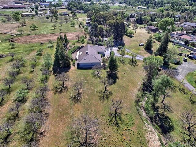 1882 Todd Road, Lakeport, CA 95453 (#LC20105326) :: Rogers Realty Group/Berkshire Hathaway HomeServices California Properties