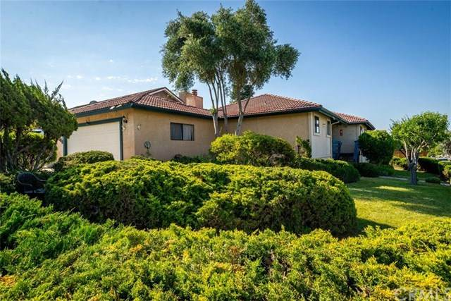 1008 Olivia Court, Paso Robles, CA 93446 (#NS20105936) :: The Costantino Group   Cal American Homes and Realty