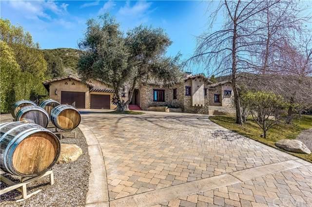 16292 Jackson Ranch Road, Silverado Canyon, CA 92676 (#PW20105333) :: American Real Estate List & Sell