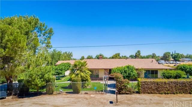 9021 E Avenue T6, Littlerock, CA 93543 (#SR20106379) :: RE/MAX Empire Properties