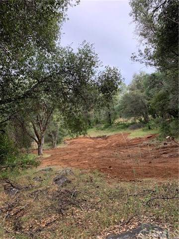 0 Whitto Mine Lot 81, Sonora, CA 95370 (#FR20106412) :: Better Living SoCal