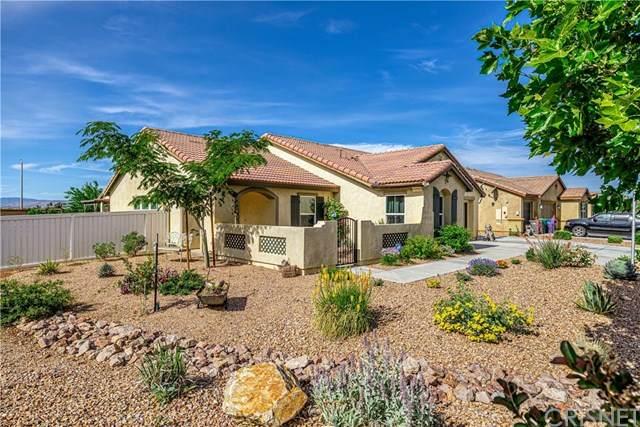 1600 Kaylyn Street, Lancaster, CA 93535 (#SR20106579) :: Powerhouse Real Estate