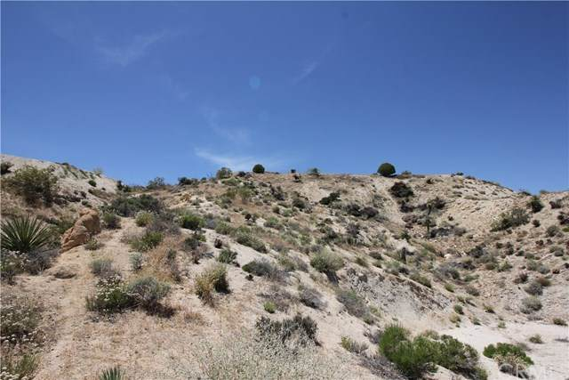 5996 Buena Suerte Road, Yucca Valley, CA 92284 (#JT20106550) :: eXp Realty of California Inc.