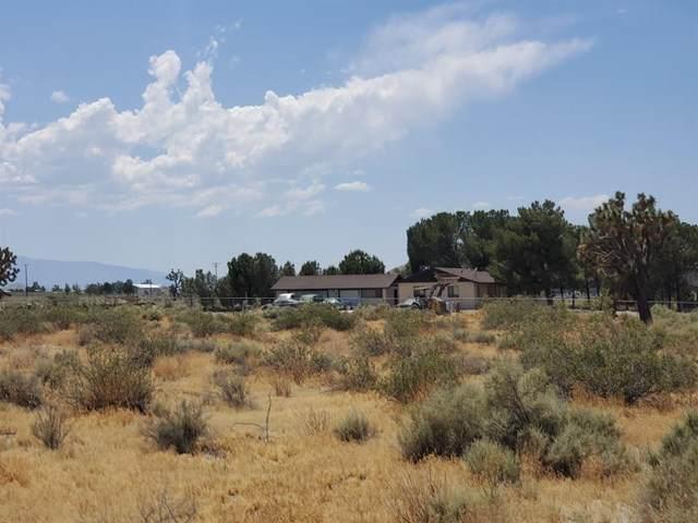 0 El Mirage Airport Rd Road, Adelanto, CA 92301 (#525068) :: Z Team OC Real Estate