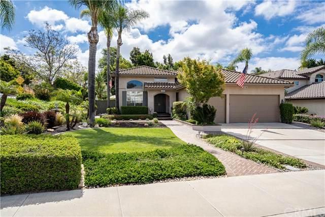 5117 Palmera Drive, Oceanside, CA 92056 (#CV20107016) :: Z Team OC Real Estate