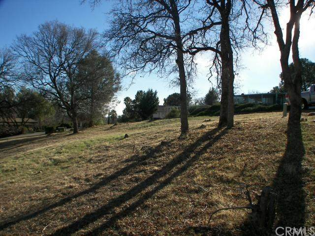 80 Rocky Bar Drive, Oroville, CA 95966 (#OR20107379) :: Allison James Estates and Homes