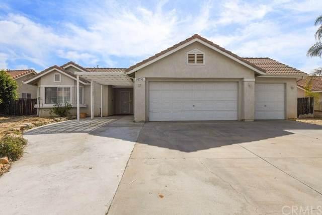 28550 Delphinus Drive, Sun City, CA 92586 (#SW20107562) :: The DeBonis Team