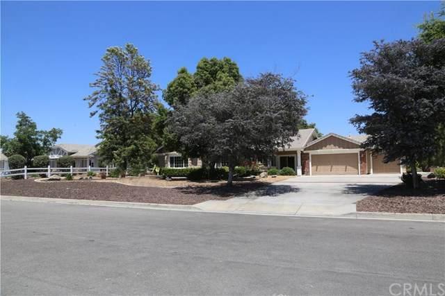 36910 Hidden Trail Court, Winchester, CA 92596 (#SW20108028) :: The DeBonis Team