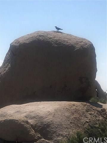 0 Dragonfly, Pioneertown, CA  (#JT20107949) :: The DeBonis Team