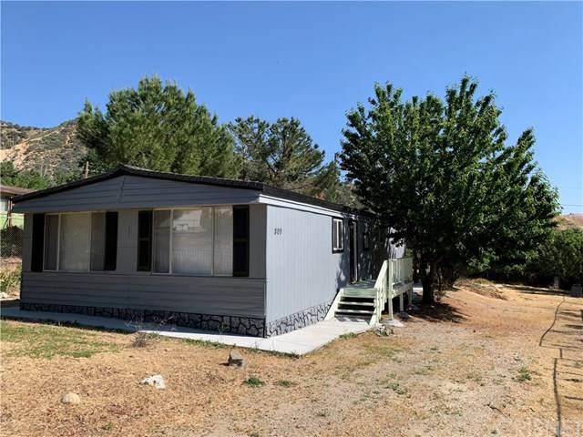 809 Morse Court, Lebec, CA 93243 (#SR20108692) :: Blake Cory Home Selling Team