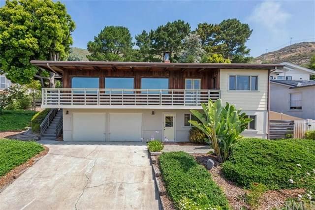 238 El Portal Drive, Pismo Beach, CA 93449 (#SC20108425) :: The Marelly Group | Compass