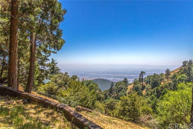 22873 Valley View Drive, Crestline, CA 92325 (#IV20109198) :: The Costantino Group | Cal American Homes and Realty