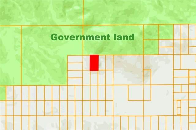 0 Oskar Lane, Morongo Valley, CA  (#IV20109763) :: Sperry Residential Group