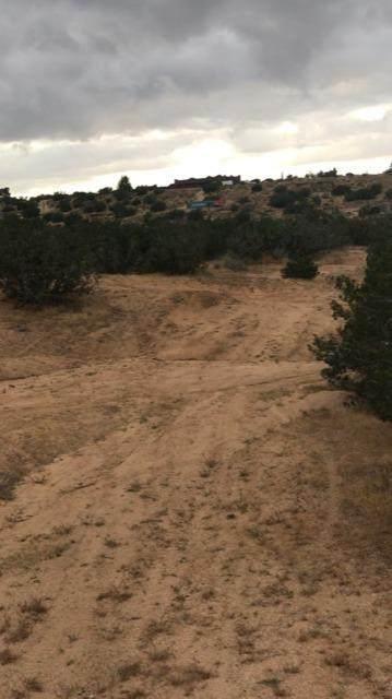 0 South Of The Mesa - Photo 1