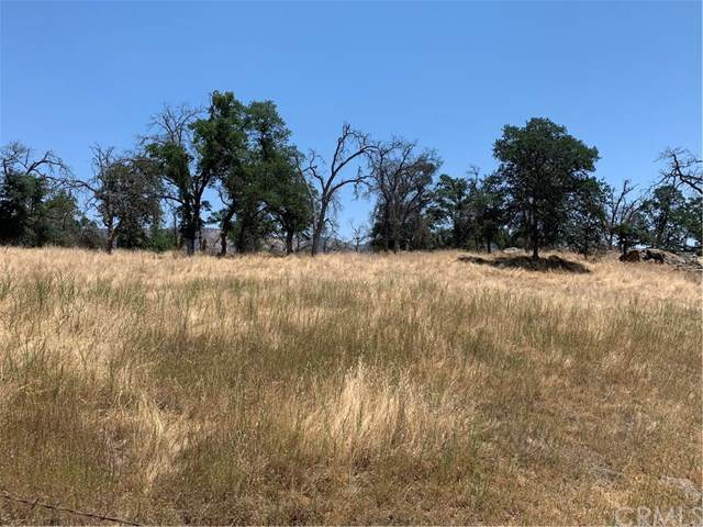 0 Hornitos Road, Catheys Valley, CA  (#MP20110878) :: Twiss Realty