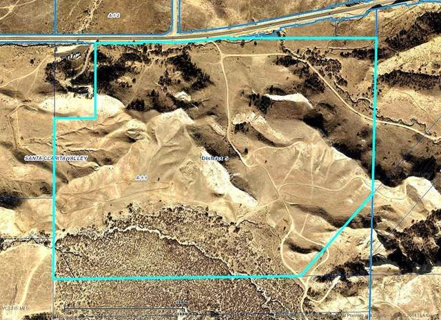 0 Vasquez Canyon Road, Valencia, CA 91354 (#220005836) :: The Brad Korb Real Estate Group