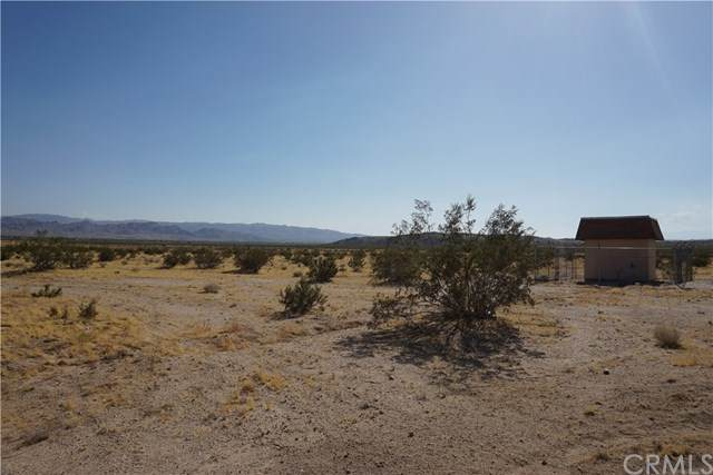 64825 Aberdeen Drive, Joshua Tree, CA 92252 (#NP20111321) :: The Laffins Real Estate Team