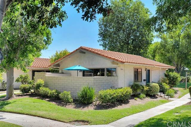 3054 S Via Serena S A, Laguna Woods, CA 92637 (#OC20111606) :: Legacy 15 Real Estate Brokers