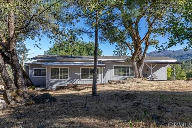4875 Whitmore Drive, Mariposa, CA 95338 (#MP20112281) :: The Houston Team | Compass