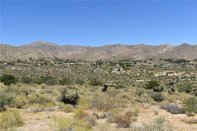 0 Maccele, Morongo Valley, CA  (#JT20115193) :: Sperry Residential Group