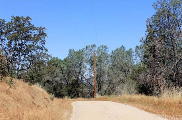0 Blueberry Hill Drive, Raymond, CA 93653 (#FR20115568) :: Twiss Realty