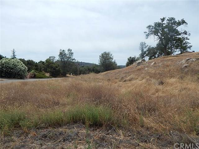 0-Lot 686 Yosemite Springs Pkwy, Coarsegold, CA 93614 (#FR20114799) :: Provident Real Estate