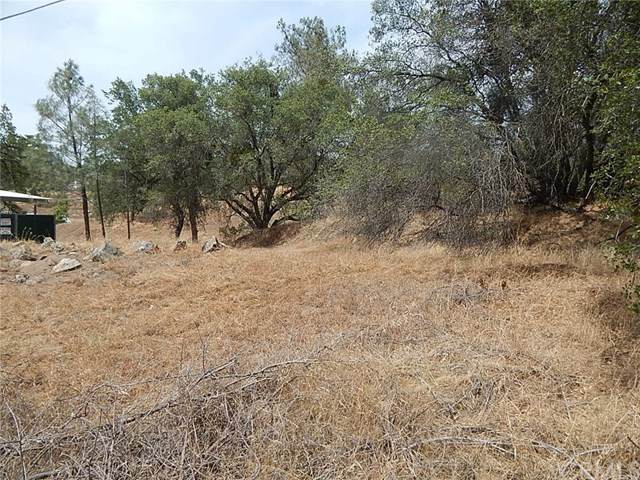 0-Lot 689 Yosemite Springs Pkwy, Coarsegold, CA 93614 (#FR20114752) :: Provident Real Estate