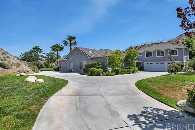 1819 El Dorado Drive, Acton, CA 93510 (#SR20109876) :: Twiss Realty