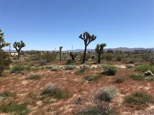 0 Vacant Land, Yucca Valley, CA  (#OC20117168) :: RE/MAX Masters