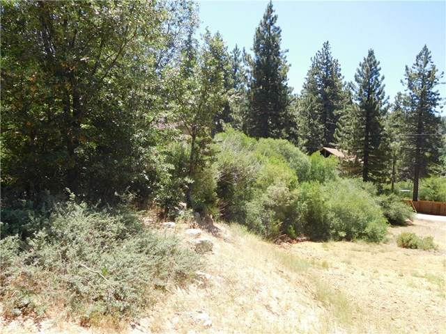 0 Fern Drive, Green Valley Lake, CA 92341 (#IV20117369) :: Sperry Residential Group