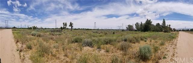 0 Greenwood Street, Oak Hills, CA 92344 (#DW20118532) :: Crudo & Associates