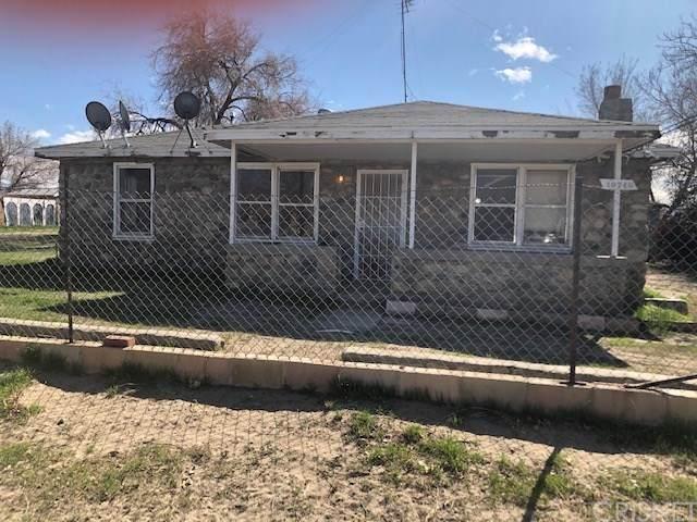 10740 E Avenue R8, Littlerock, CA 93543 (#SR20118784) :: Allison James Estates and Homes