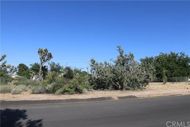 7769 Shawnee Trail, Yucca Valley, CA 92284 (#TR20119861) :: Allison James Estates and Homes