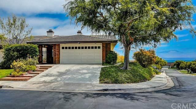 35 Skysail Drive, Corona Del Mar, CA 92625 (#NP20121055) :: Z Team OC Real Estate