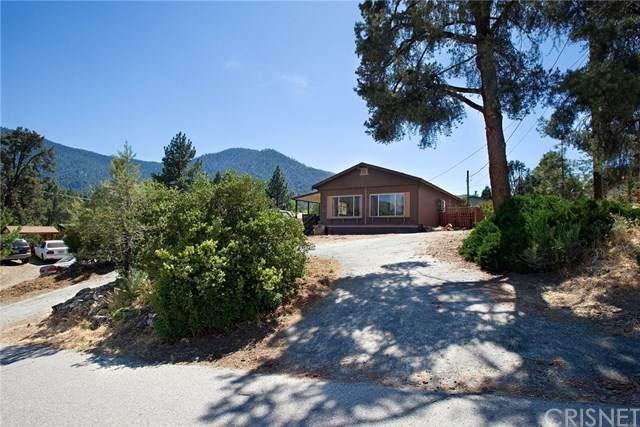 2721 Klondike Way, Pine Mountain Club, CA 93225 (#SR20121402) :: Z Team OC Real Estate