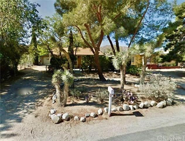 55373 Navajo, Yucca Valley, CA 92284 (#SR20122184) :: RE/MAX Masters