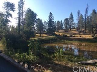 5394 Tip Top Road, Mariposa, CA 95338 (#FR20057482) :: The Houston Team | Compass