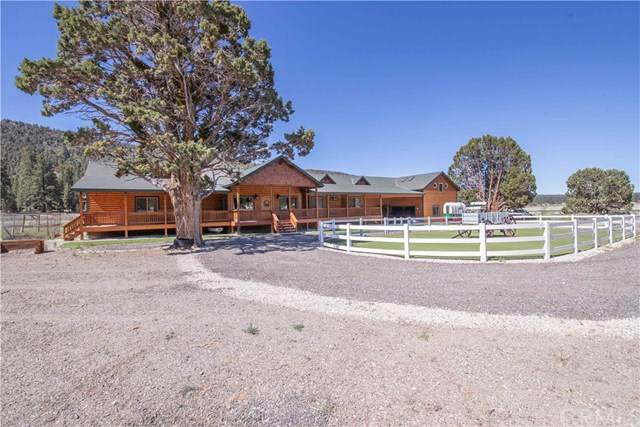 2806 Erwin Ranch Road - Photo 1
