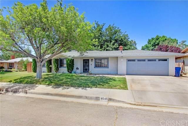 8545 E Avenue U6, Littlerock, CA 93543 (#SR20125011) :: Allison James Estates and Homes