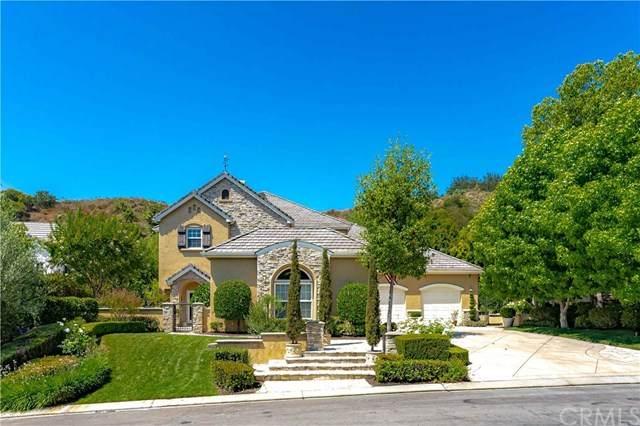 8 Lusitano, Coto De Caza, CA 92679 (MLS #OC20124490) :: Desert Area Homes For Sale